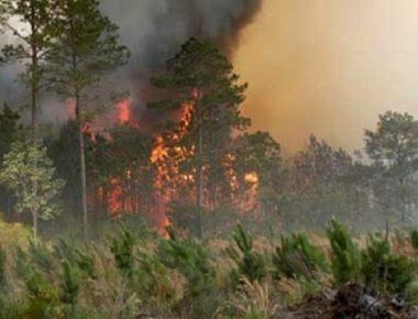 Zjarr-ne-Sllupcan-605x370