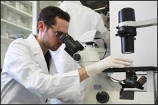 eskperiment, mikroskop