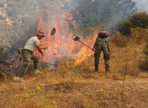FA me zjarret (2)