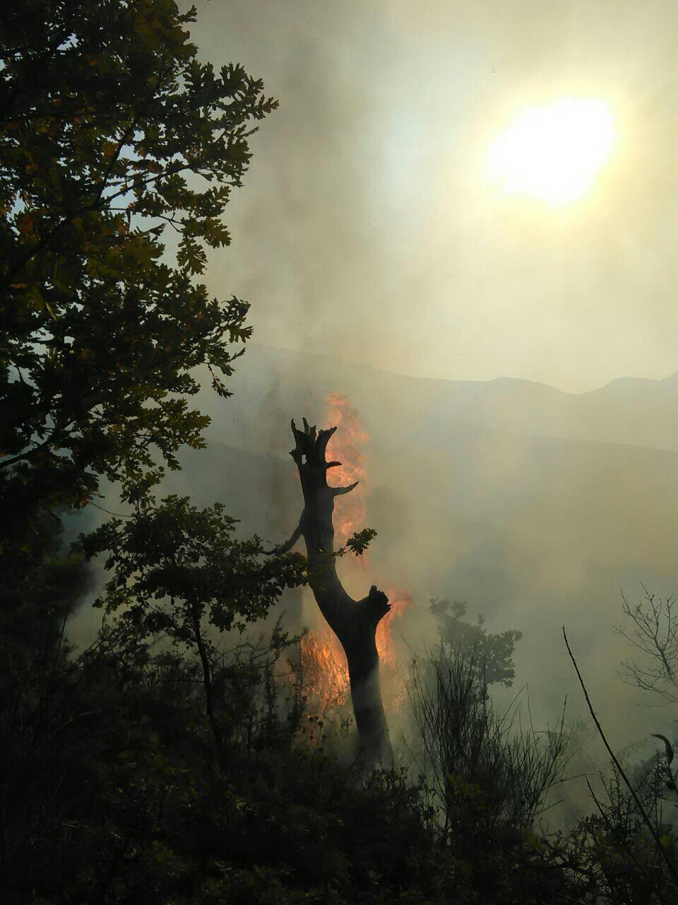 FA me zjarret (5)