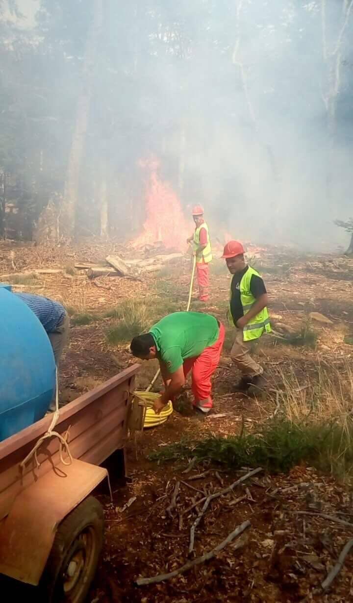 zjarr Demiraj (1)