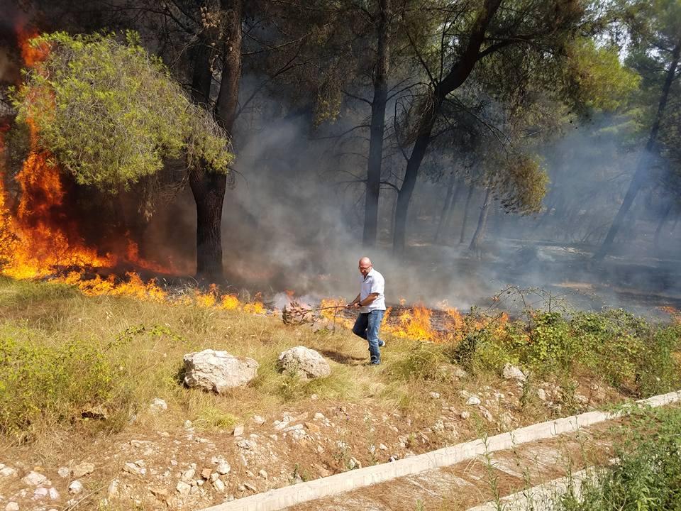zjarr Demiraj (2)