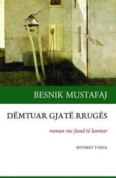 Fb Besnik Mustafaj Demtuar Gjate Rruges 669x1024