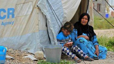 Auto Refugees M21560954428