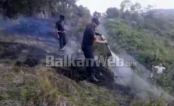 Zjarr Ne Patos