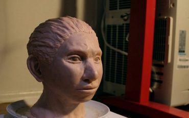 3 D Printed Reconstruction Of A Female Denisovan. Credit Maayan Harel 1024x640 672x420