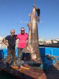 Kapet Peshkaqen Ne Durres 5