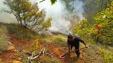 Zjarri Bulqize