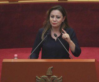 Deputetja (1)